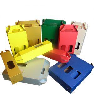 scatola per bottiglie colorate